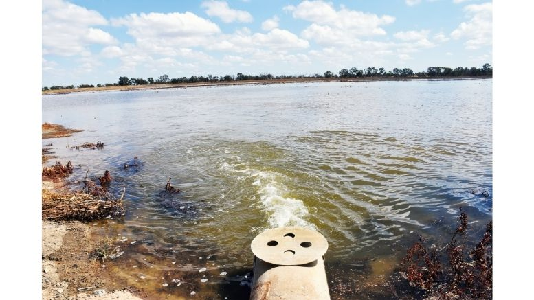 Gum Bend Lake in Condobolin is beginning to fill up. Image Credit: Melissa Blewitt.