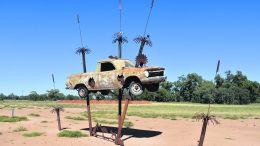 Ute-opia by Stephen Coburn on an 1962 EJ Ute donated by Margaret Sanderson. Memories of highways pass through her windscreen and back window as at the end of her transport life her decaying body becomes shade and a sanctury for wildlife. Image Credits: Melissa Blewitt