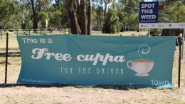 Locally the following businesses will be participating in the Free Cuppa for the Driver Scheme: Condobolin - Bowser Bean Café, Condobolin RSL Club and the former Shell Condobolin are taking part in the Free Cuppa for the Driver scheme. The initiative runs from 1 March to 31 May annually. Image Credit: Melissa Blewitt.
